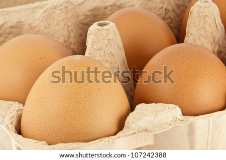 Detailed closeup picture from a box with eggs (with clipping path) - stock photo