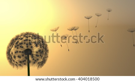 Detailed dandelion silhouette in orange sunset sky