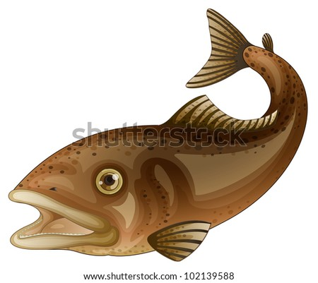 Detailed fish illustration on white - EPS VECTOR format also available in my portfolio. - stock photo