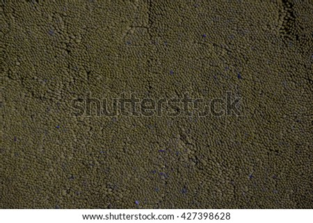 detailed macro shot of a texture of carpet - stock photo