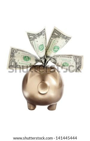 Detailed shot of banknotes and piggy bank on white background. - stock photo