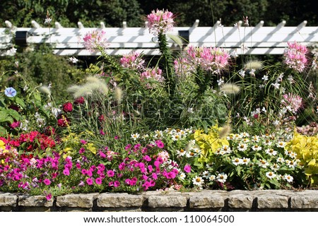 details of a fabulous flowers garden
