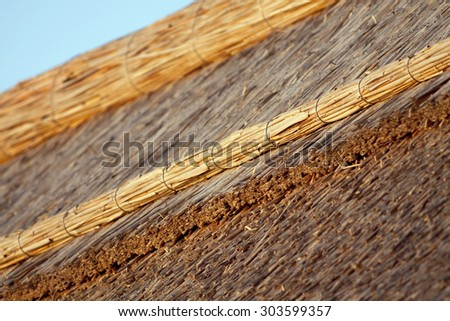 Details of the top of a thatched eco house