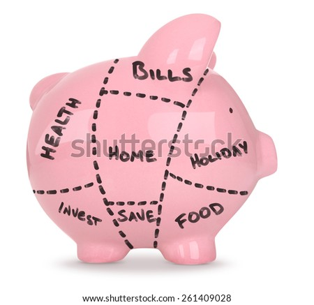 Devided up Budget - Piggy Bank on White Background - stock photo
