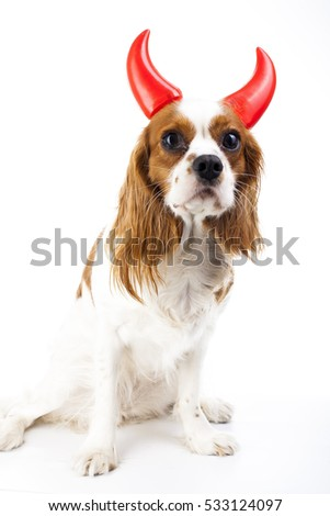 Devil dog illustration king charles spaniel with devil hat evil dog