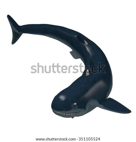 Devonian Cladoselache Shark - Cladoselache is one of the first primitive predatory sharks that lived in the seas of North America in the Devonian Period. - stock photo