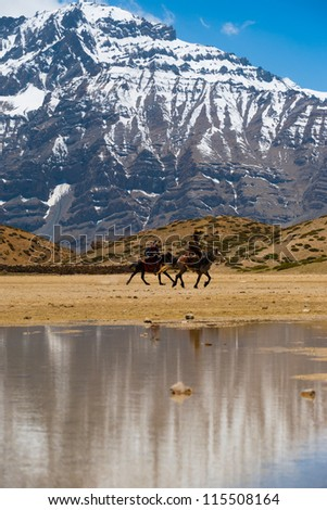 DHANKAR, INDIA - JUNE 7: Unidentified Buddhist pilgrims ride horses on pilgrimage to a holy lake among the Himalayan mountains in the Spiti Valley on June 7, 2009 in Dhankar, India - stock photo