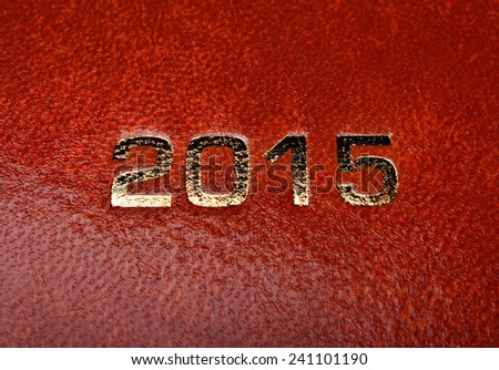 Diary notes agenda 2015 of a brown skin - stock photo