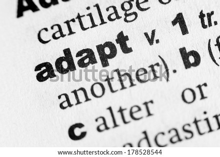 Dictionary definition of the word Adapt - stock photo
