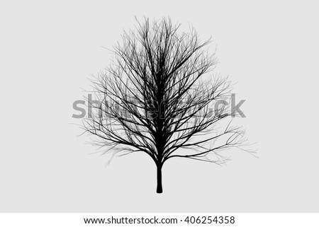 die tree black silhouettes - stock photo