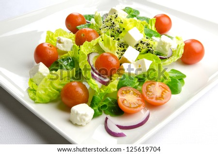 Diet time, fresh salad for a healthy lifestyle - stock photo
