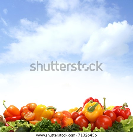 Different fresh tasty vegetables isolated on white background - stock photo