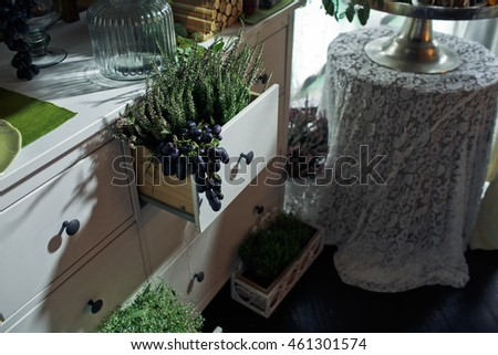 Different kinds of greenery stand in the drawers and grapes hangs out of the one of them
