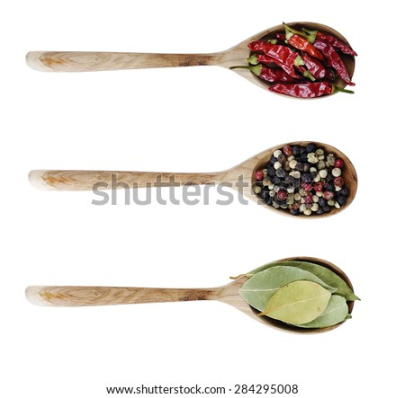 Different kinds of seasoning in the spoons - stock photo