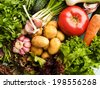 Different kinds of vegetables and greens. Viewed from above. - stock photo