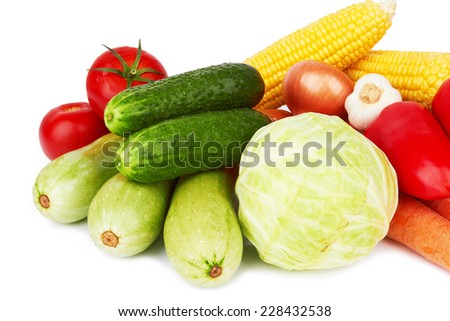 different kinds of vegetables on a white background