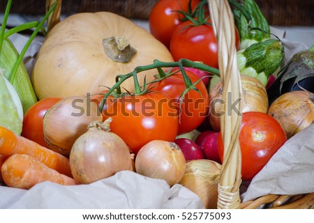 Different kinds of vegetables picked in the harvest basket