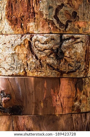 Different piece of wood texture - stock photo