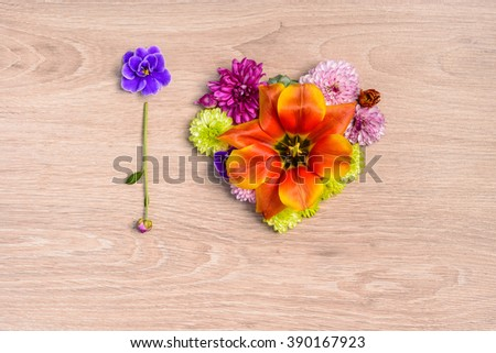 Different single flowers scattered on wooden table