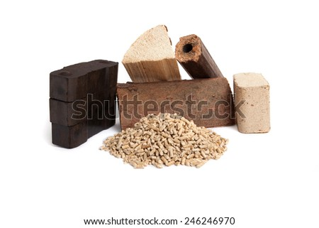 different sorts of fossil fuels, wooden pellets, briquettes, dried firewood, and carbon on white background, isolated,  - stock photo