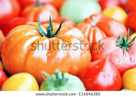 different sorts of tomato close up - stock photo