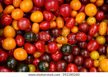 Different sorts of Tomatoes