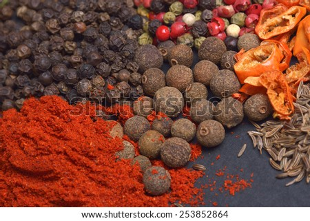 Different spices and herbs - stock photo