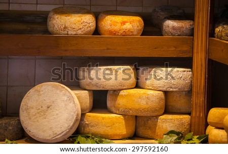 Different types of cheese on a counter in shop - stock photo