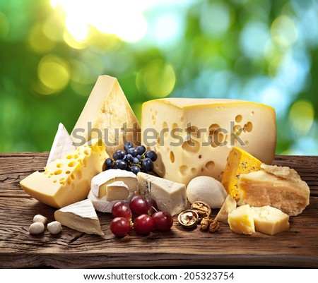 Different types of cheese over old wooden table with green leaves on the background.