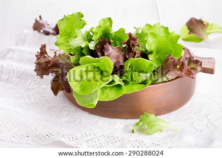 Different varieties of lettuce. Green and red fresh leaves. - stock photo