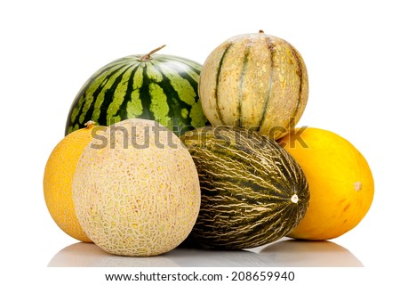 Different varieties of melons mirrored and isolated on white Background