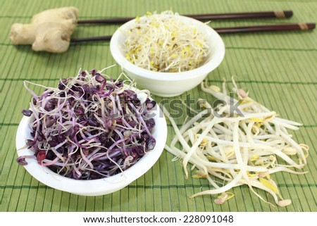 different varieties of sprouts on a bast mat - stock photo