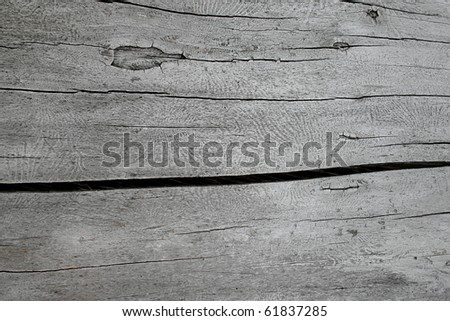 Difficult structure of a dark tree for a background - stock photo