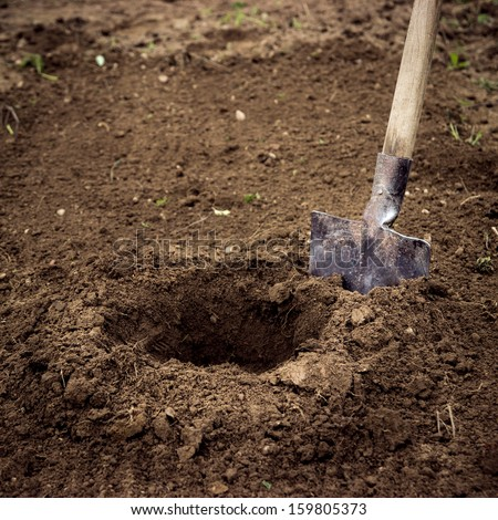 Dig a hole. Planting or searching.