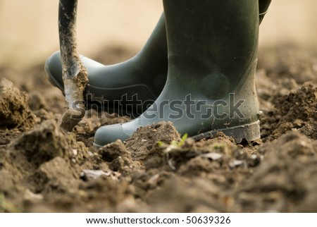 Digging - stock photo