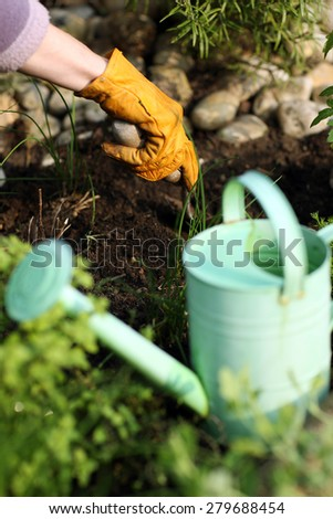 Digging for planting  - stock photo