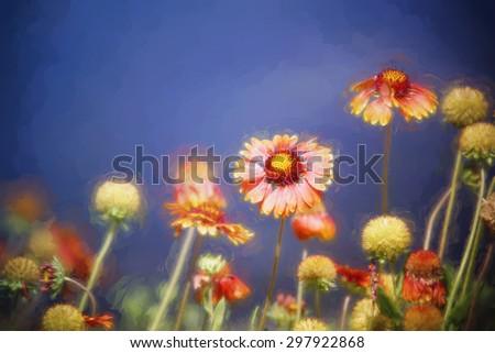 Digital art, artistic composition Echinacea Sombrero Salsa Red (Coneflower) - stock photo