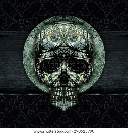 Digital art grunge textured skulls decorated ornament artwork background in cold, silver and black colors. - stock photo