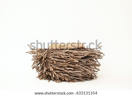 Digital Background Of Natural Wood Owl Nest Newborn Photography Prop