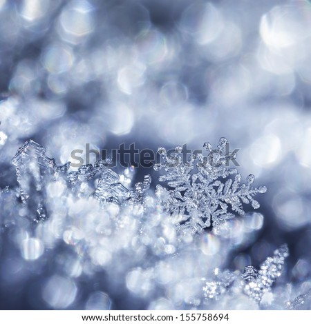 Digital composite of snowflakes and winter frost - stock photo