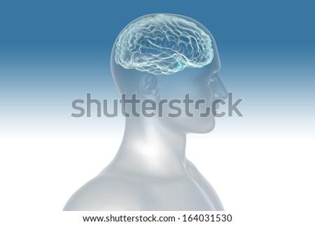 digital illustration men and brain - stock photo