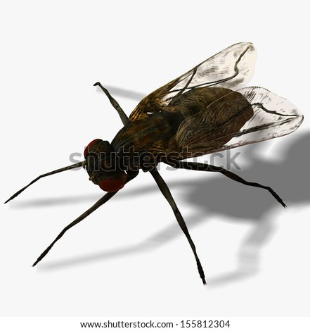 Digital Illustration of a Fly - stock photo