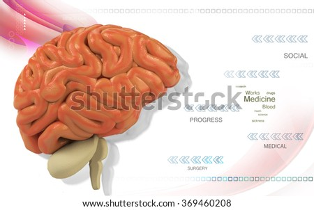 Digital illustration of  brain in co lour  background