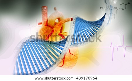 Digital illustration of 3d heart with dna in digital background