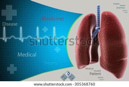 Digital illustration of human lungs in colour background