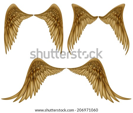 Digital illustration of wings. Isolated on white and with a Clipping Path, they are ready to be composited with other images. - stock photo
