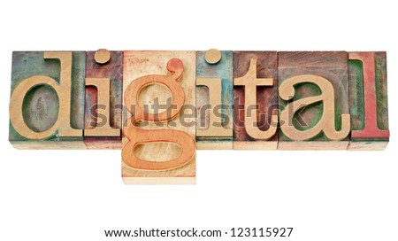 digital - isolated word in vintage letterpress wood type blocks
