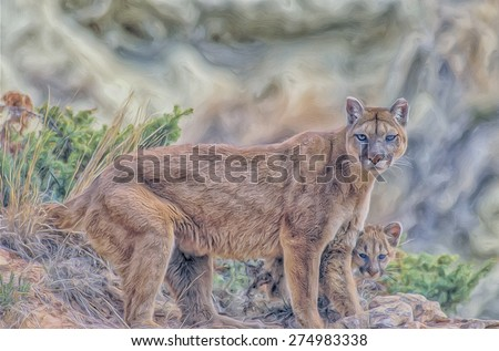 Digital oil painting, cougar with her kit - stock photo