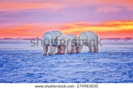 Digital oil painting of polar bear family in Arctic sunset - stock photo