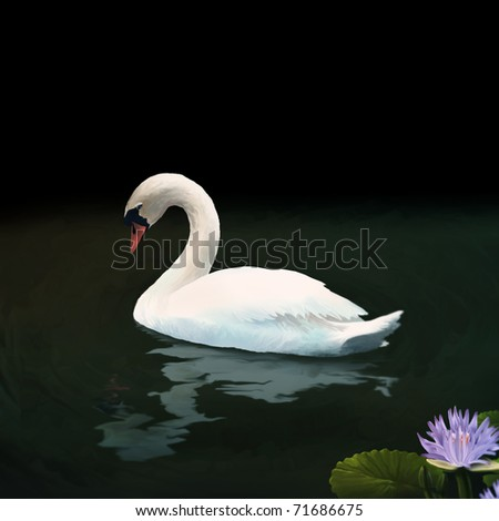 digital painting of a white mute swan floating on dark water above a rippling reflection - stock photo